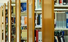 紐約大學最愛國際學生?2018年美國門戶開放報告說的!
