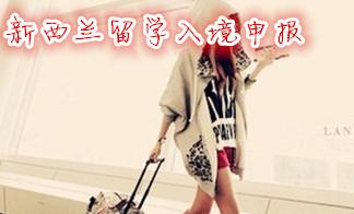 行李准备及入境申报