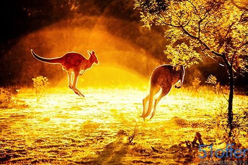 2016澳洲公共假期出炉