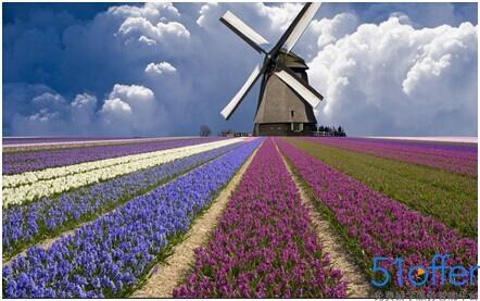 荷兰留学 关于移民的种类介绍