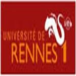 雷恩第一大学